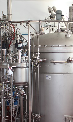 Fermenter Cascade 6500 Liter Engineering and Construction by bbi-biotech