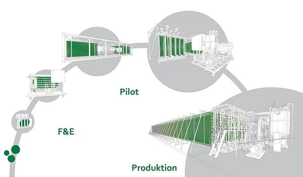 Skalierung von Photobioreaktoren vom Labor bis zur Produktion