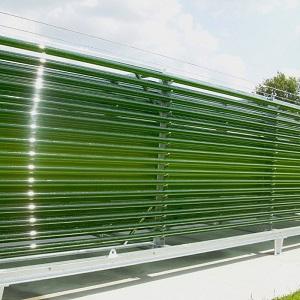 Photobioreaktor 3000 Liter Mikroalgen Pilot im Freiland Sonnenlicht