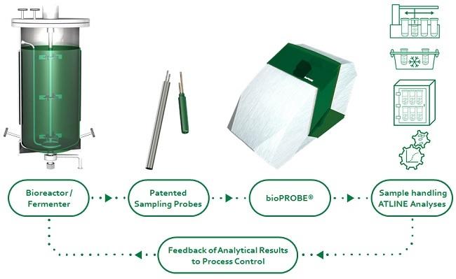 Atline Analyse in einem auf bioPROBE basierenden Komplex