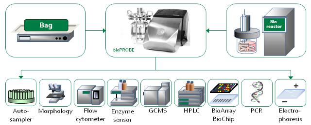bioPROBE - Der Schlüssel zu PAT-Konnektivität